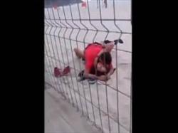 【個人撮影】一般人投稿!通りがかった砂浜で泥酔してるカップルが堂々とセックスしてる様子を盗撮してみたの画像