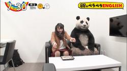 【GIF画像あり】『ZIP!』パンダの横で821(ハニー)のレイアちゃんがパンチラ放送事故wwwの画像