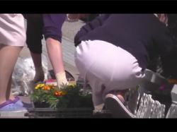 【着衣尻盗撮動画】看護服姿のまま病院の花壇のお手入れをするナースの着衣尻や見えそうで見えないパンツを狙う!の画像