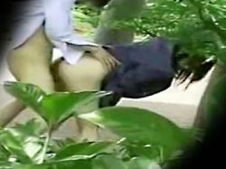 【JK青姦セックス盗撮動画】ラブホ代ケチってもさすがにココではまずい…公園の木陰で野外セックスする女子校生を隠し撮りwwの画像