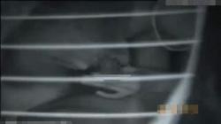 【カーセックス盗撮動画】暗視カメラを使って車内を撮影…チンポを勢い良くフェラチオし、騎乗位でハメる!の画像
