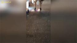 【野外放尿盗撮動画】歌舞伎町の歓楽街で泥酔したミニスカギャルが豪快に立ちションする瞬間を隠し撮り!の画像
