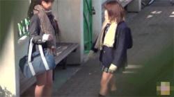 【JK野ション盗撮動画】女子校生が勢いに任せて友達と野外でオシッコ!キャハハと笑いながらパンツをズラしおまんこを出す!の画像