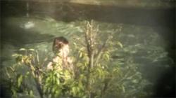【熟女露天風呂盗撮動画】これは最高品質のお乳!スタイル抜群奥様の綺麗すぎるおっぱい!の画像