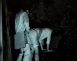 腰振り速過ぎワロタwww深夜の公園ベンチで時短SEXに耽るカップルを隠し撮りの画像